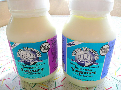 lactobacillus in yogurt - photo #24
